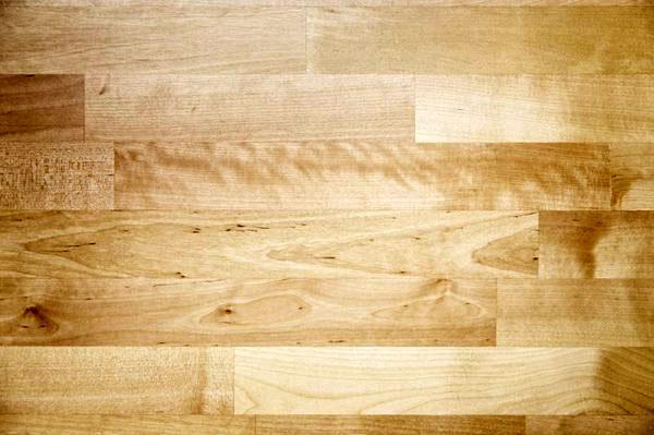 Birch             used in furniture