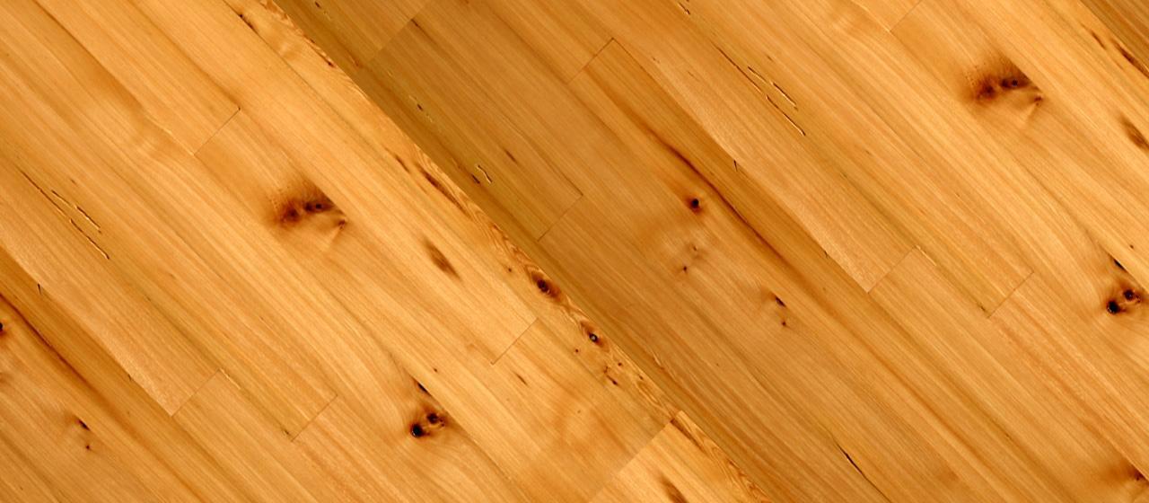 Elm used             in furniture