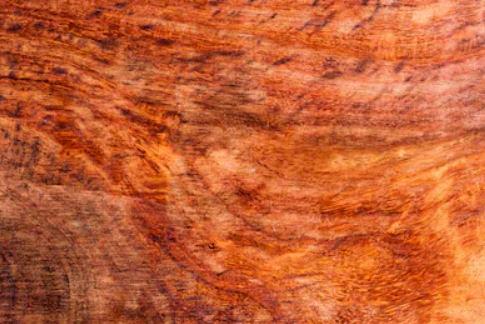 Koa wood             in furniture construction